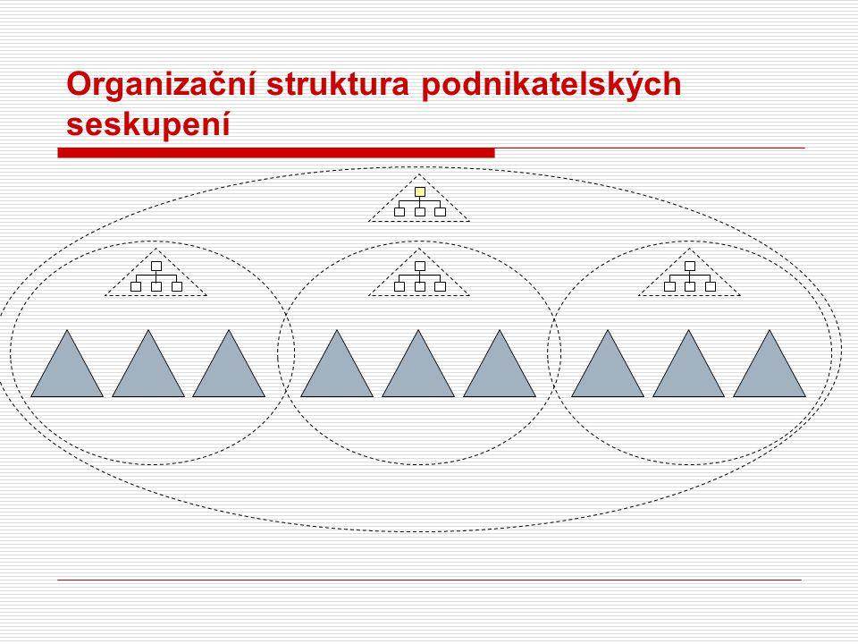 Organizační struktura podnikatelských seskupení