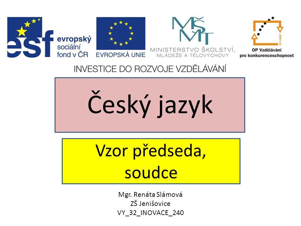 Český jazyk Vzor předseda, soudce Mgr. Renáta Slámová ZŠ Jenišovice