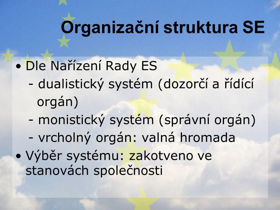 Organizační struktura SE