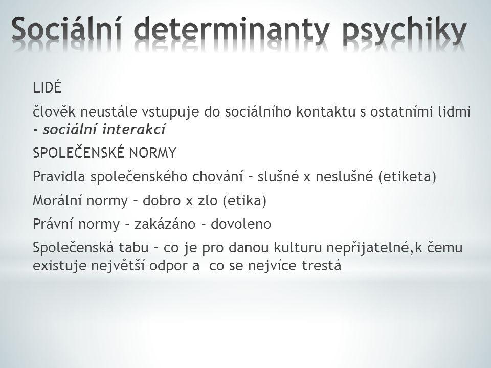 Sociální determinanty psychiky