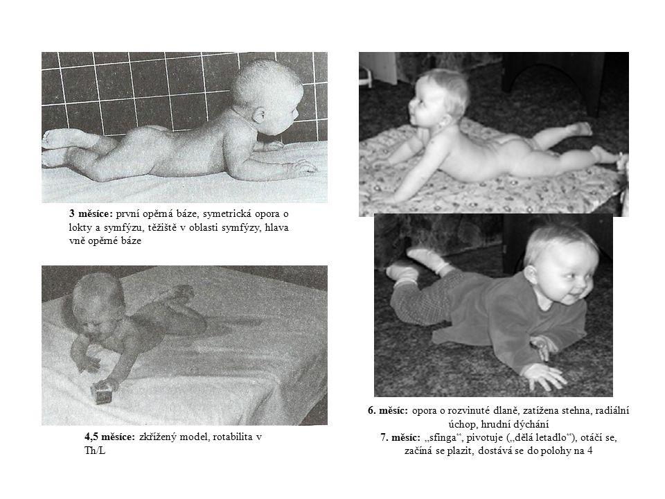 3 měsíce: první opěrná báze, symetrická opora o lokty a symfýzu, těžiště v oblasti symfýzy, hlava vně opěrné báze
