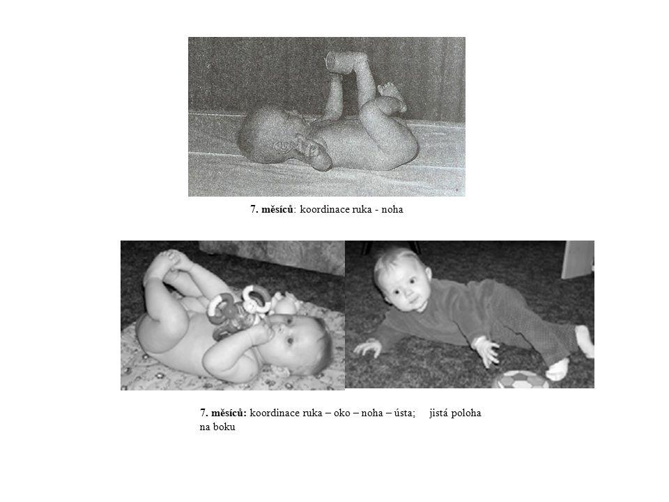 7. měsíců: koordinace ruka - noha