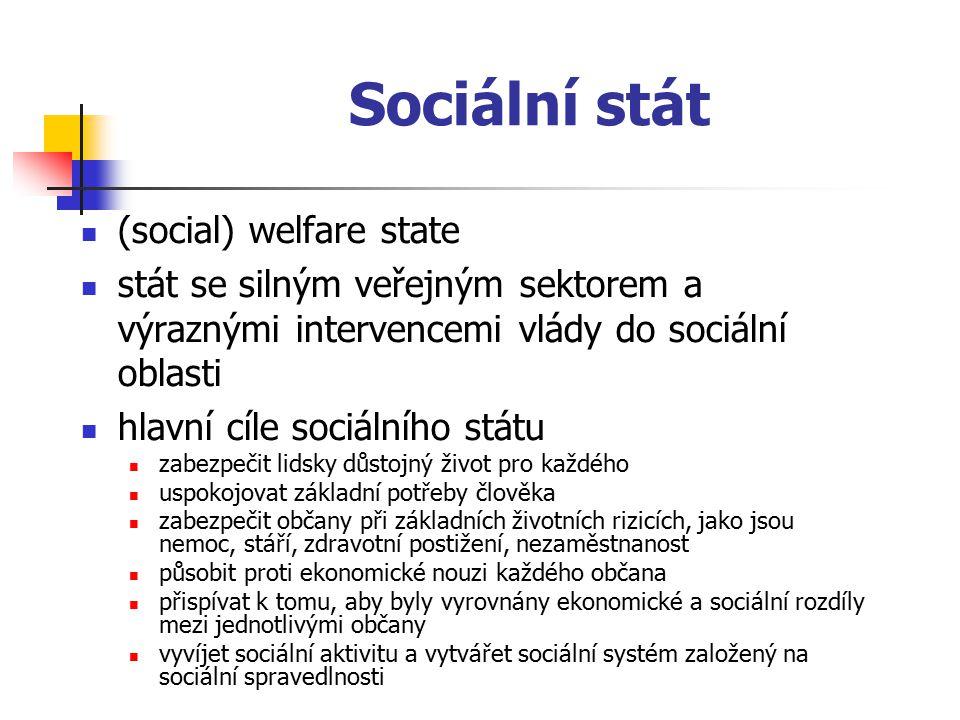 Sociální stát (social) welfare state