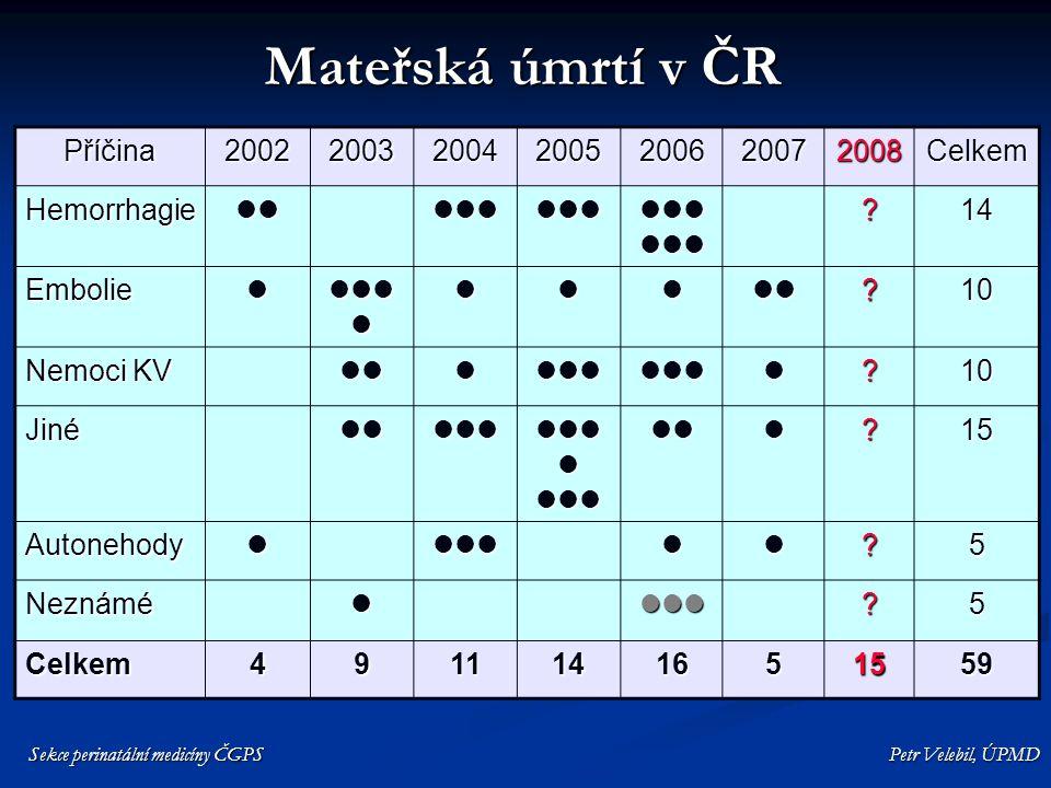 Mateřská úmrtí v ČR Příčina 2002 2003 2004 2005 2006 2007 2008 Celkem