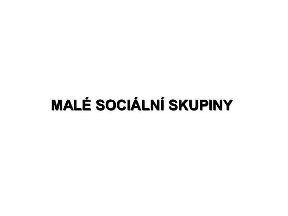 MALÉ SOCIÁLNÍ SKUPINY
