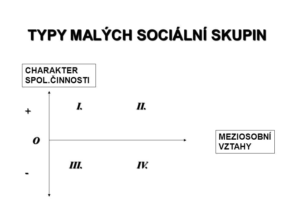 TYPY MALÝCH SOCIÁLNÍ SKUPIN
