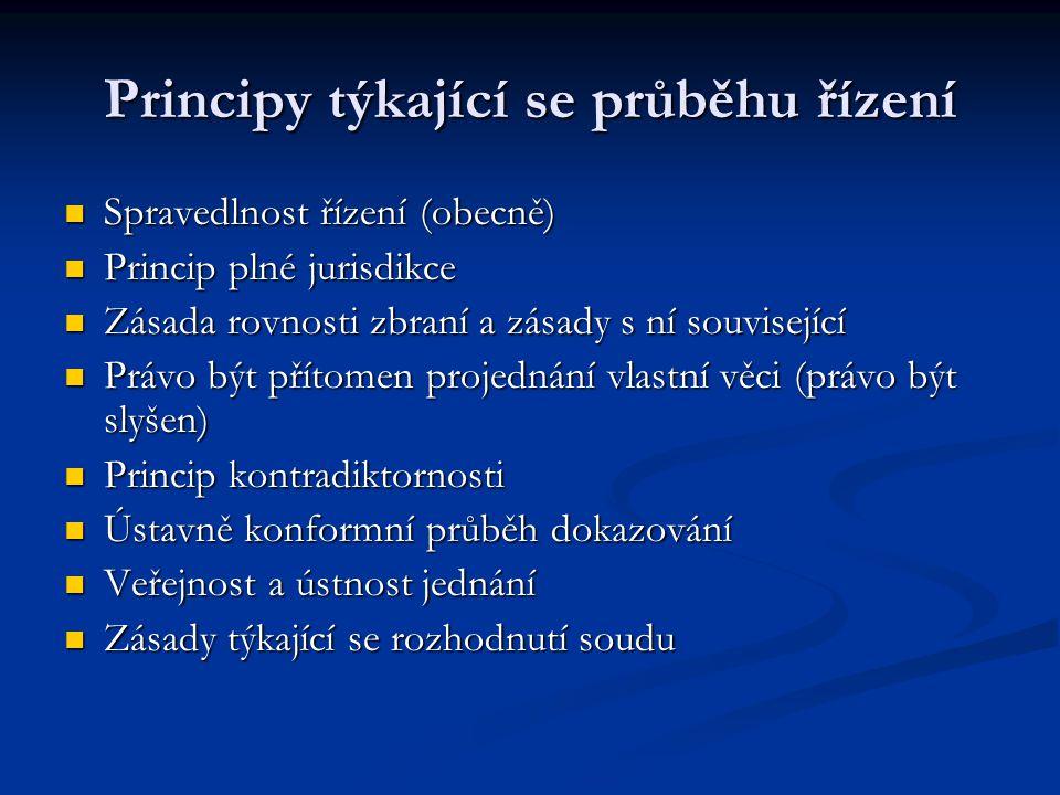 Principy týkající se průběhu řízení