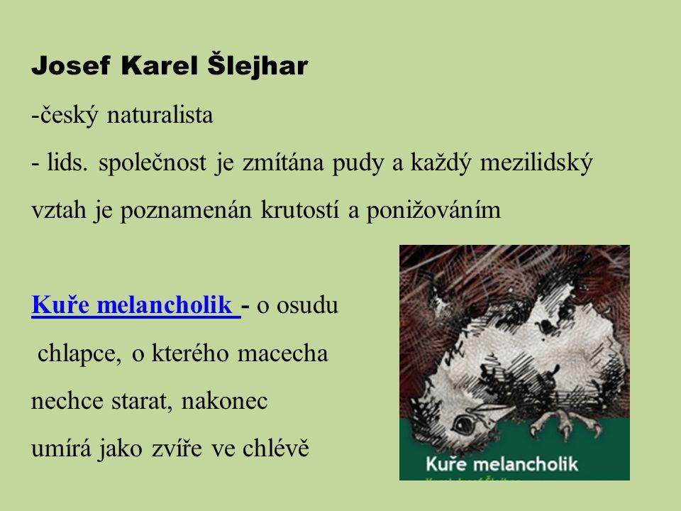 Josef Karel Šlejhar český naturalista. lids. společnost je zmítána pudy a každý mezilidský vztah je poznamenán krutostí a ponižováním.