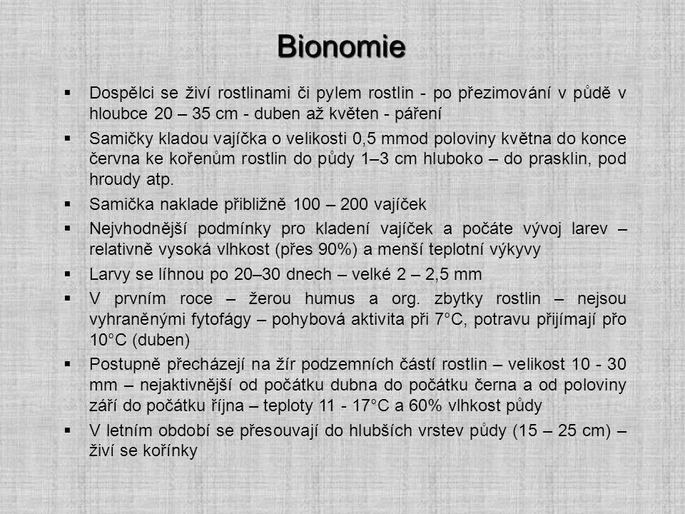 Bionomie Dospělci se živí rostlinami či pylem rostlin - po přezimování v půdě v hloubce 20 – 35 cm - duben až květen - páření.