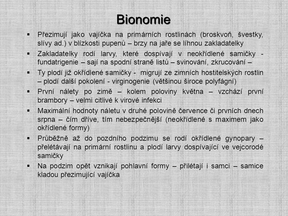 Bionomie Přezimují jako vajíčka na primárních rostlinách (broskvoň, švestky, slívy ad.) v blízkosti pupenů – brzy na jaře se líhnou zakladatelky.