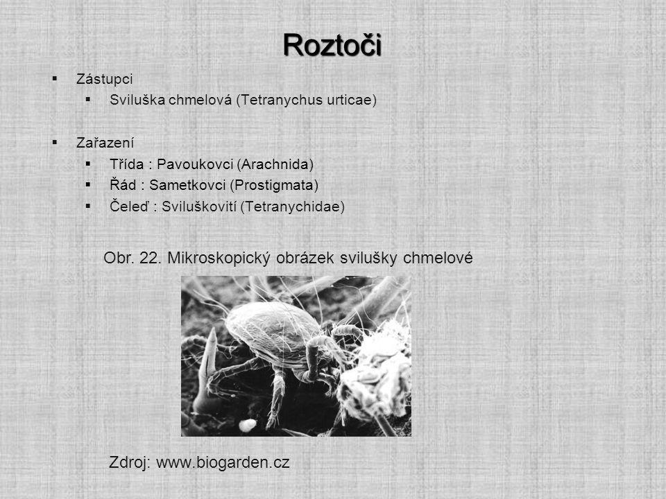 Roztoči Obr. 22. Mikroskopický obrázek svilušky chmelové