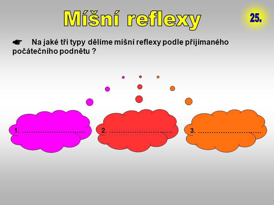 Míšní reflexy 25. Na jaké tři typy dělíme míšní reflexy podle přijímaného počátečního podnětu 1. ……………………….