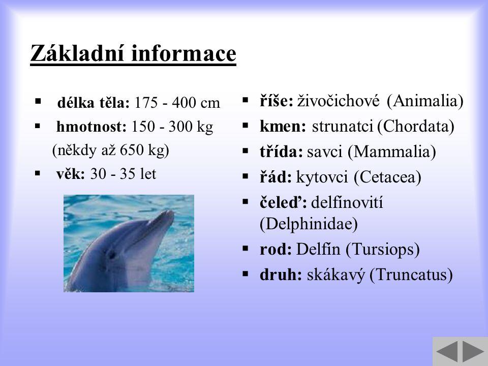 Základní informace délka těla: 175 - 400 cm