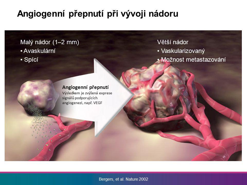 Angiogenní přepnutí při vývoji nádoru
