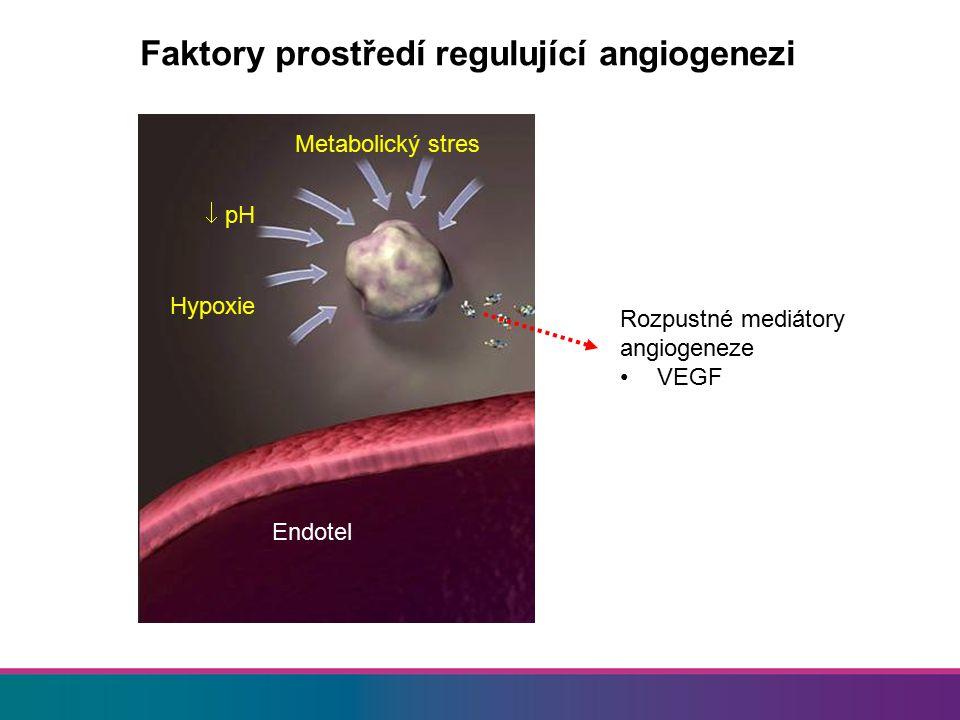 Faktory prostředí regulující angiogenezi