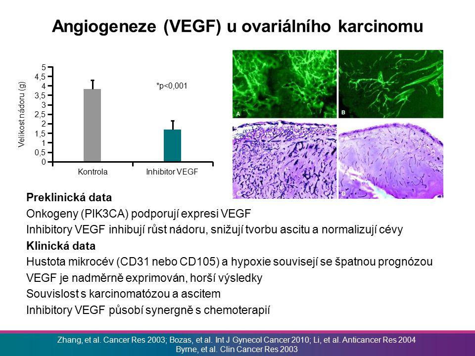 Angiogeneze (VEGF) u ovariálního karcinomu