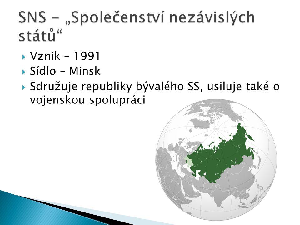 """SNS - """"Společenství nezávislých států"""