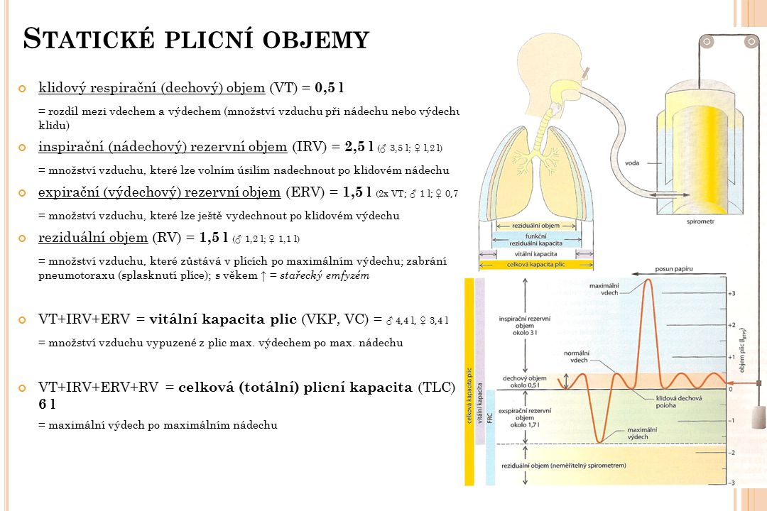 Statické plicní objemy