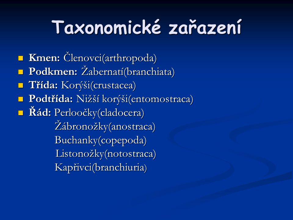 Taxonomické zařazení Kmen: Členovci(arthropoda)
