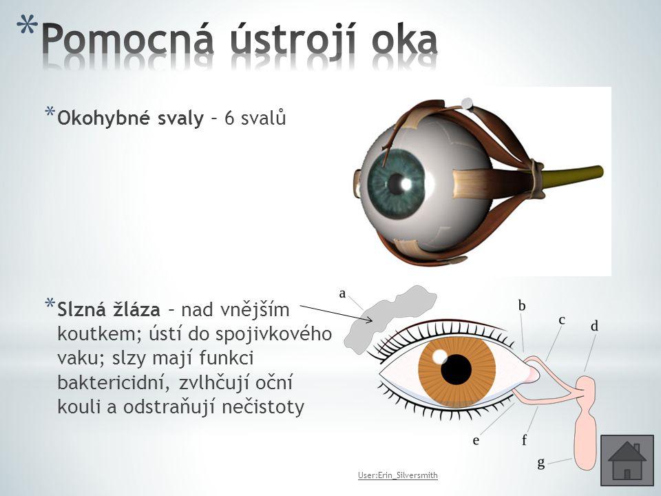 Pomocná ústrojí oka Okohybné svaly – 6 svalů