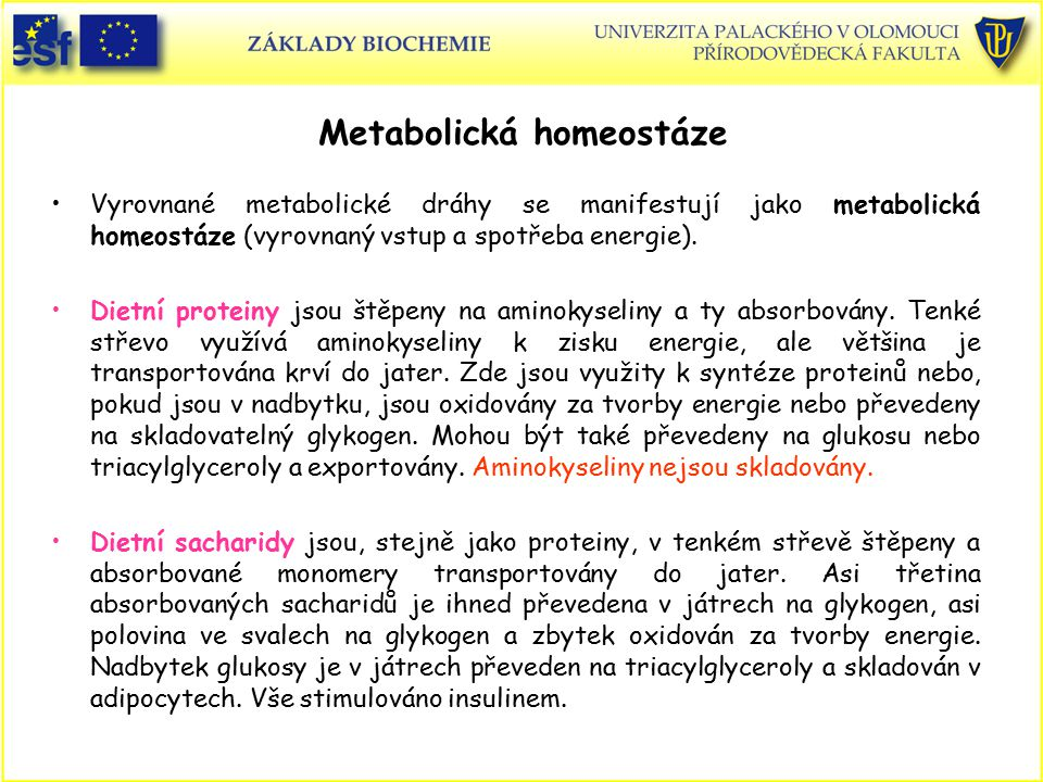 Metabolická homeostáze