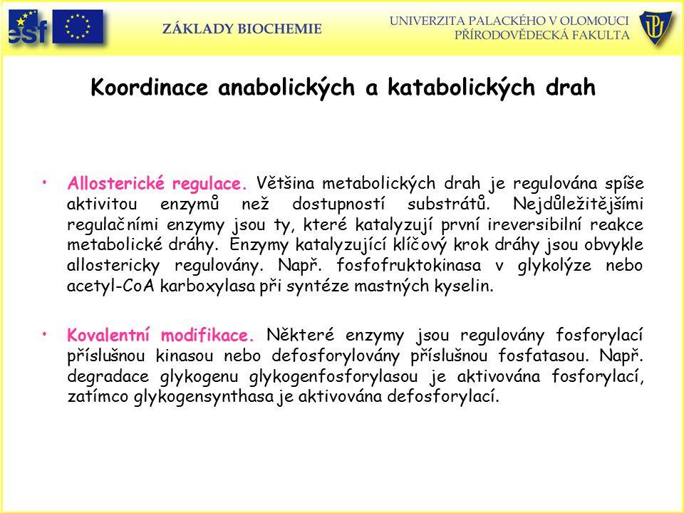 Koordinace anabolických a katabolických drah