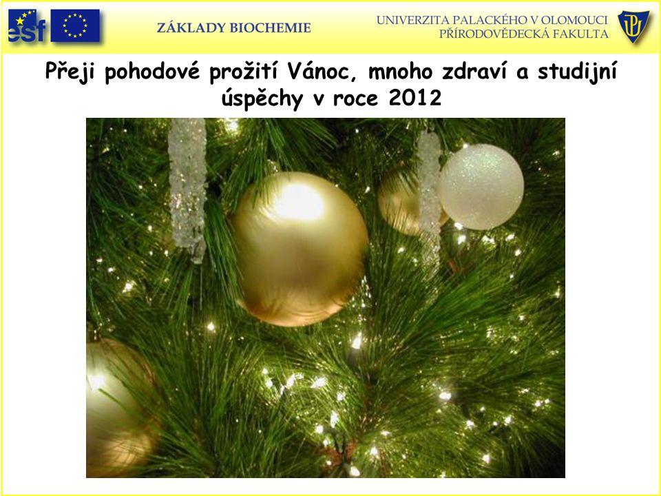 Přeji pohodové prožití Vánoc, mnoho zdraví a studijní úspěchy v roce 2012