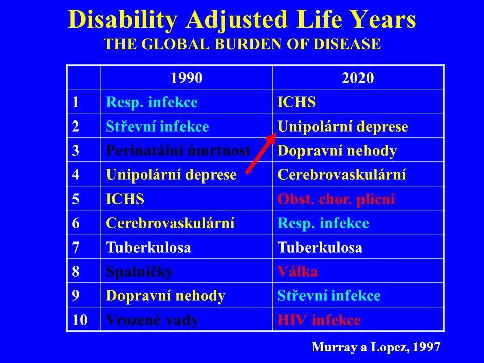 Disability Adjusted Life Years THE GLOBAL BURDEN OF DISEASE