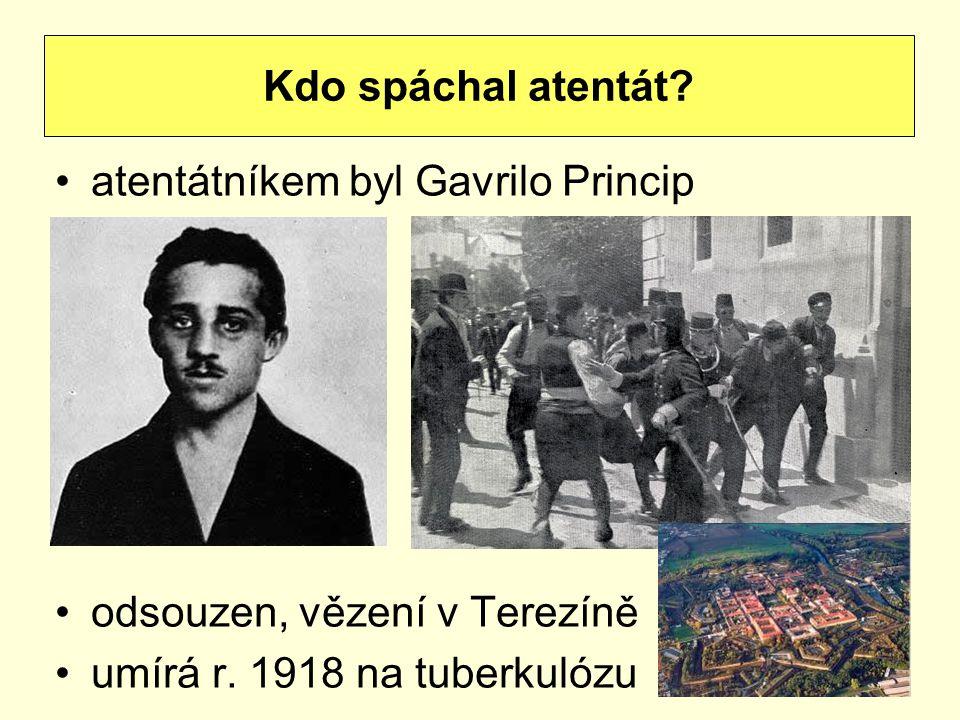Kdo spáchal atentát. atentátníkem byl Gavrilo Princip.