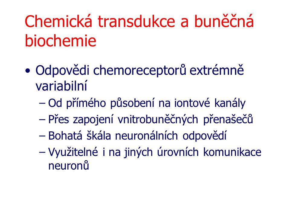 Chemická transdukce a buněčná biochemie
