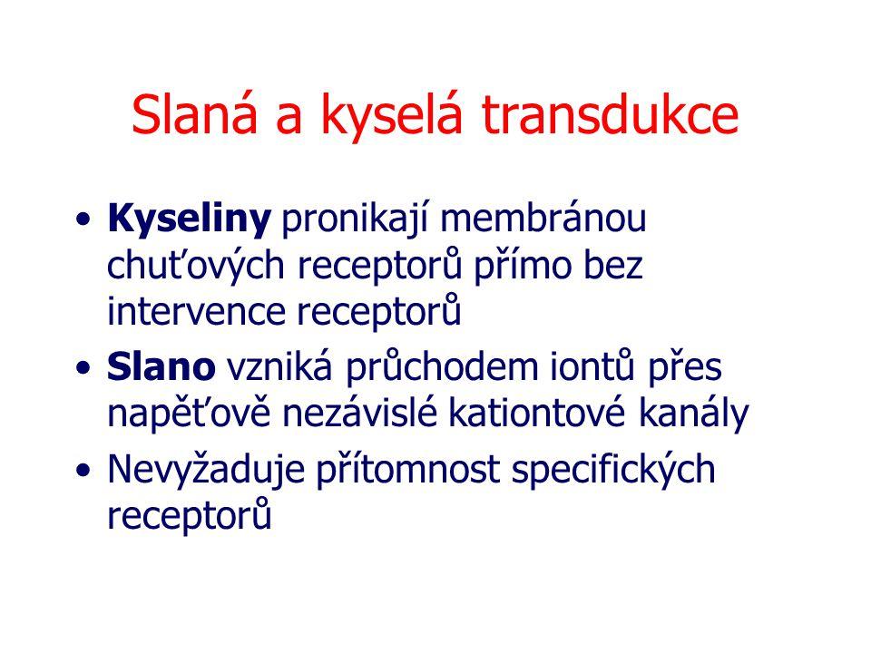 Slaná a kyselá transdukce