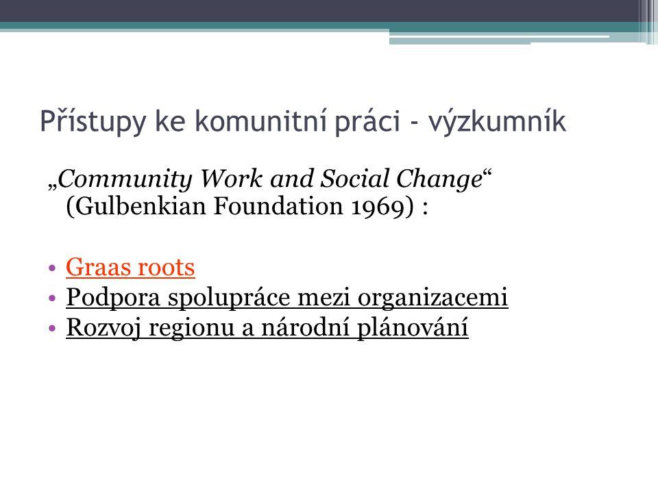 Přístupy ke komunitní práci - výzkumník
