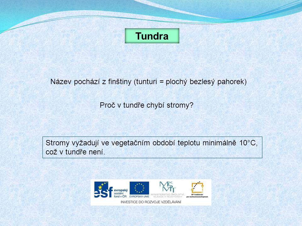 Tundra Název pochází z finštiny (tunturi = plochý bezlesý pahorek)