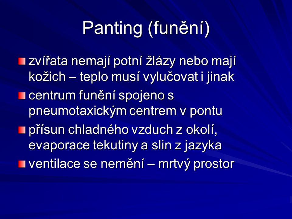 Panting (funění) zvířata nemají potní žlázy nebo mají kožich – teplo musí vylučovat i jinak. centrum funění spojeno s pneumotaxickým centrem v pontu.