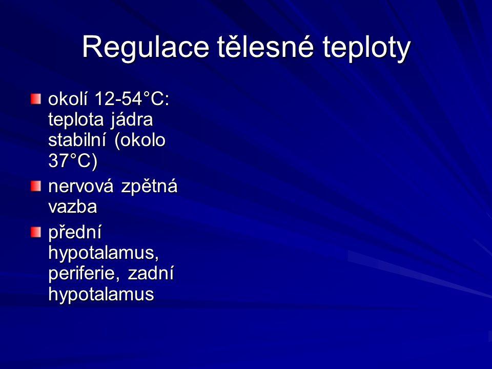 Regulace tělesné teploty