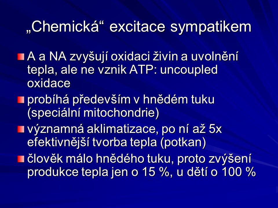 """""""Chemická excitace sympatikem"""