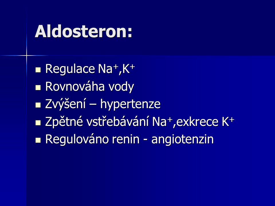 Aldosteron: Regulace Na+,K+ Rovnováha vody Zvýšení – hypertenze