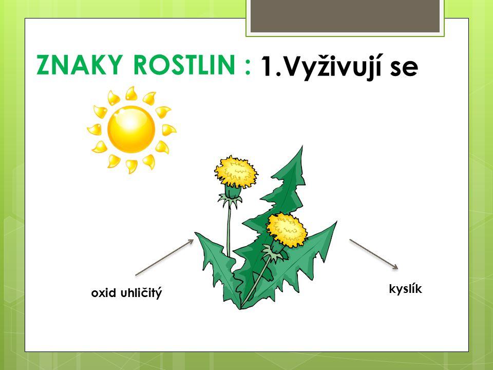 ZNAKY ROSTLIN : 1.Vyživují se kyslík oxid uhličitý