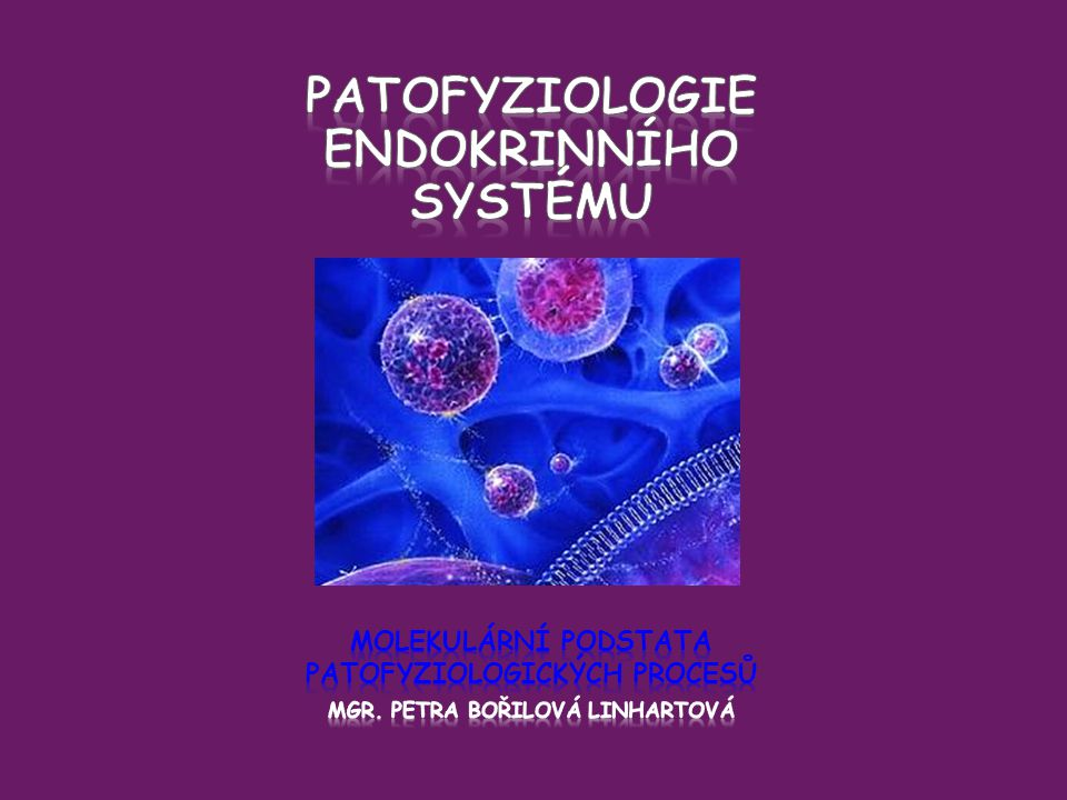 patofyziologie endokrinního systému