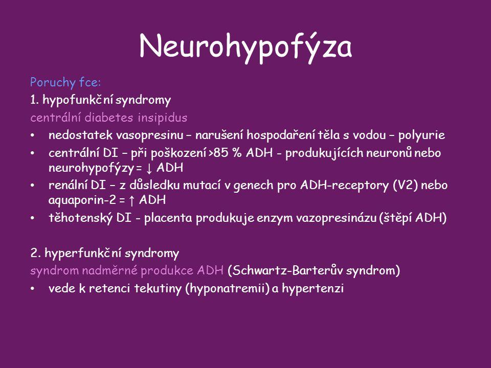 Neurohypofýza Poruchy fce: 1. hypofunkční syndromy
