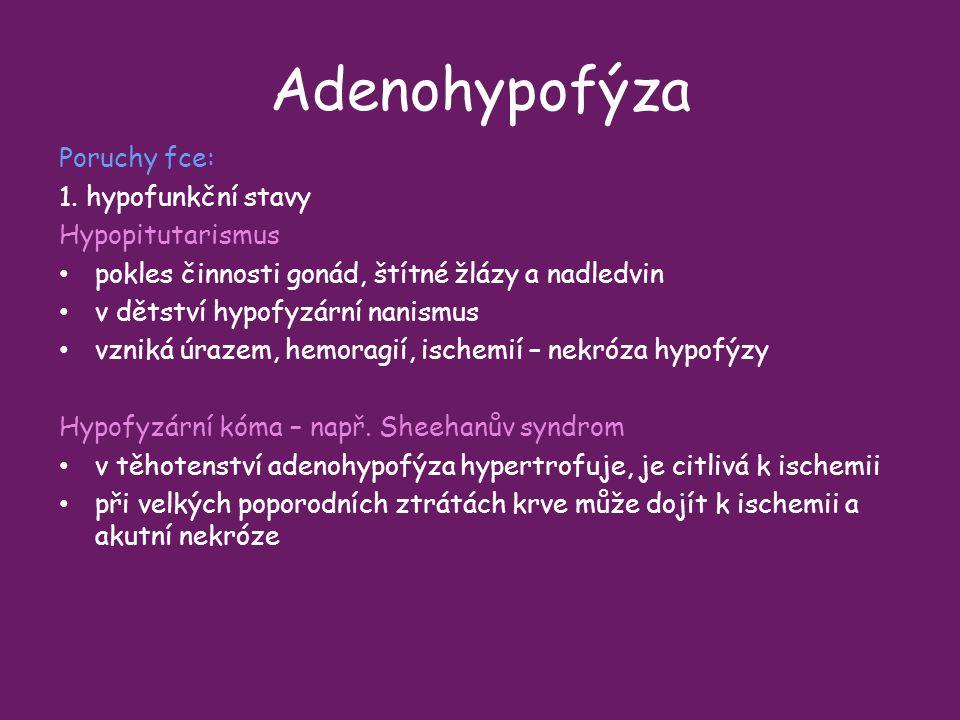 Adenohypofýza Poruchy fce: 1. hypofunkční stavy Hypopitutarismus