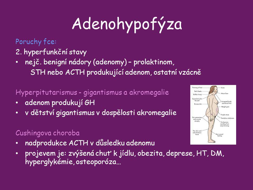 Adenohypofýza Poruchy fce: 2. hyperfunkční stavy