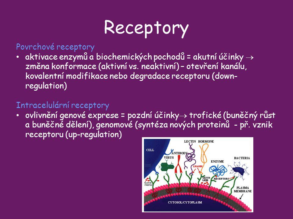 Receptory Povrchové receptory