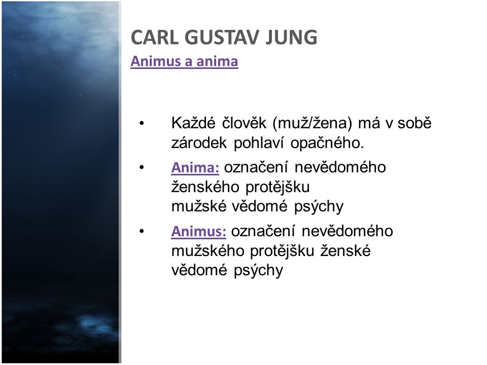 CARL GUSTAV JUNG Animus a anima