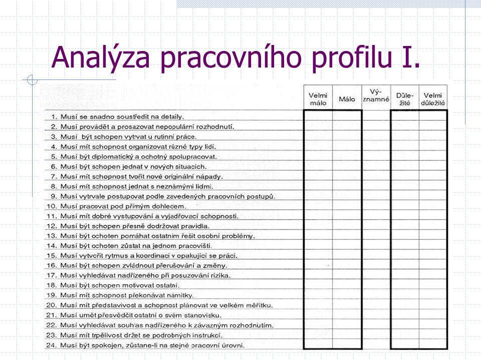 Analýza pracovního profilu I.