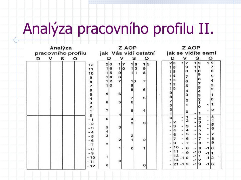 Analýza pracovního profilu II.