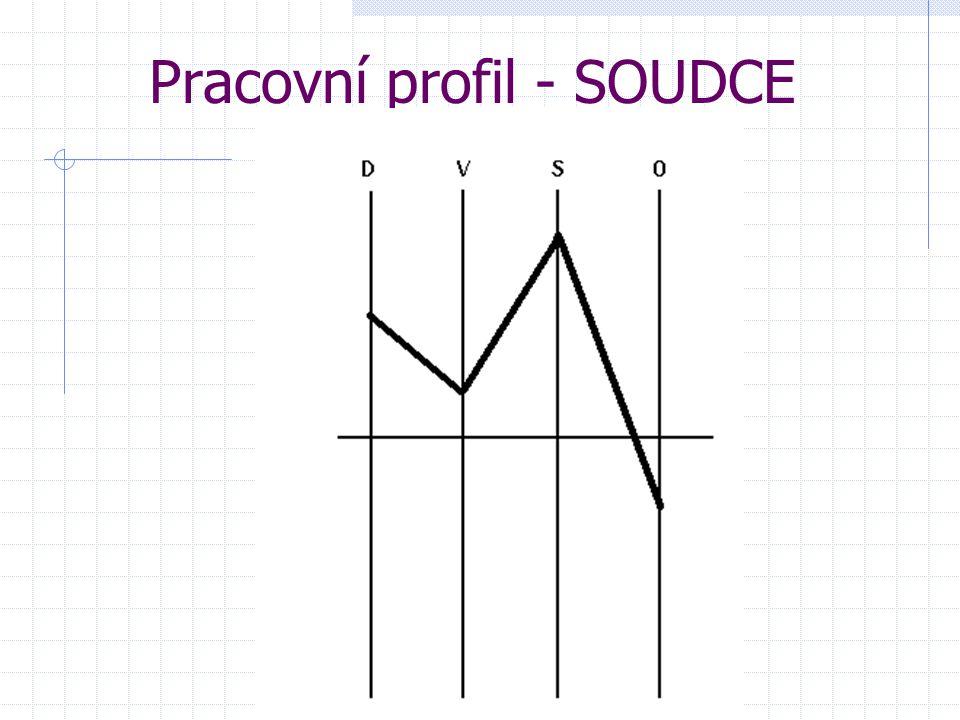 Pracovní profil - SOUDCE
