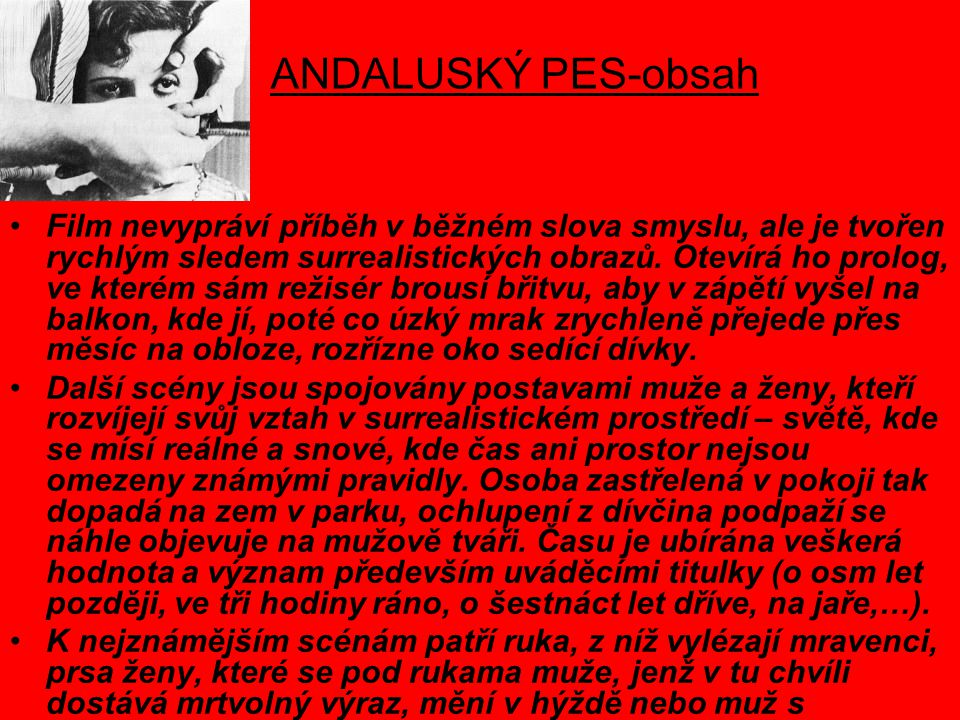 ANDALUSKÝ PES-obsah