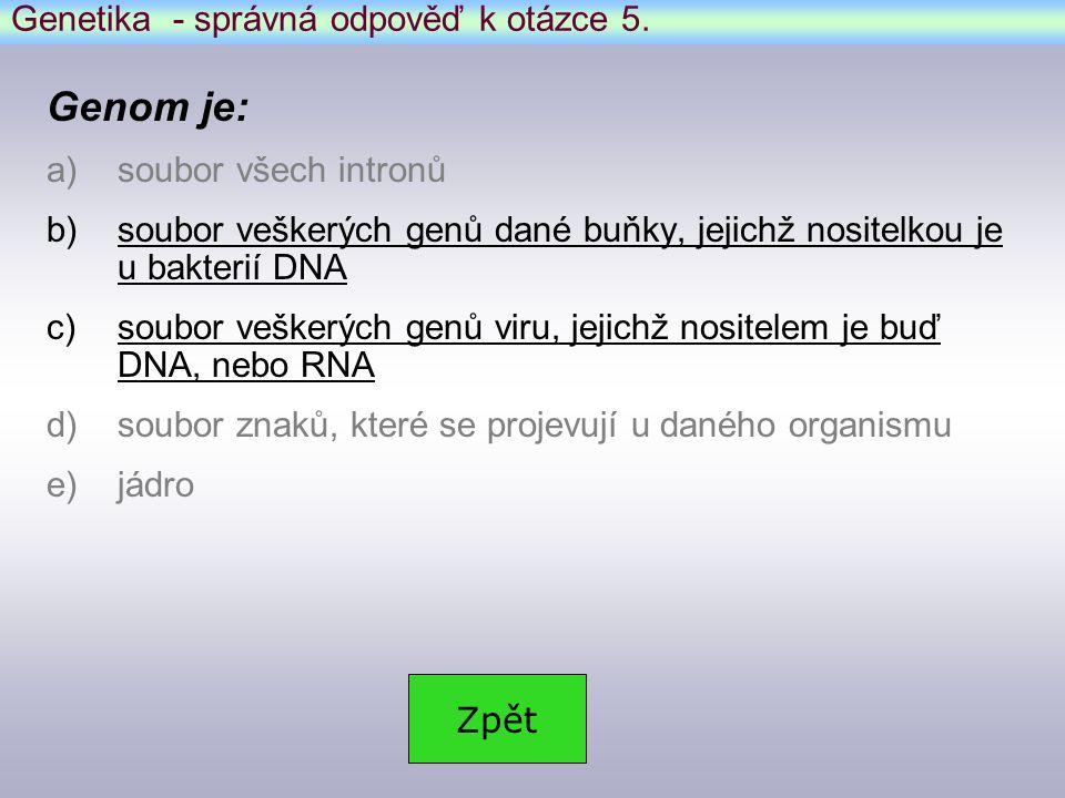 Genetika - správná odpověď k otázce 5.