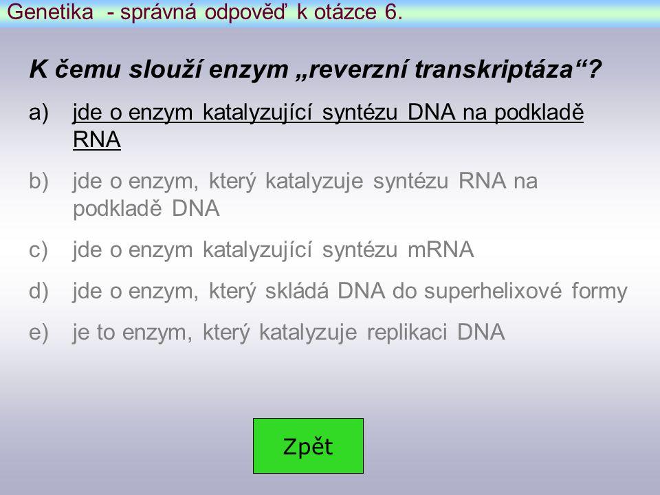 Genetika - správná odpověď k otázce 6.